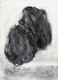 au plus près, 2019, mine de plomb et fusain sur papier, 20,7 x 14,5 cm