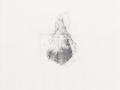 sans titre, 2001, mine de plomb et huile sur papier, 60 x 50 cm