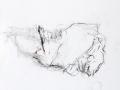 sans titre, 2005, pastel gras, mine de plomb, crayon et huile sur papier, 172 x 145 cm