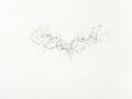 sans titre, 2011, crayon de couleur et mine de plomb sur papier, 56 x 76 cm