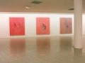"""Exposition """"làça"""", Médiathèque Marguerite Yourcenar, Faches-Thumesnil, 2000"""